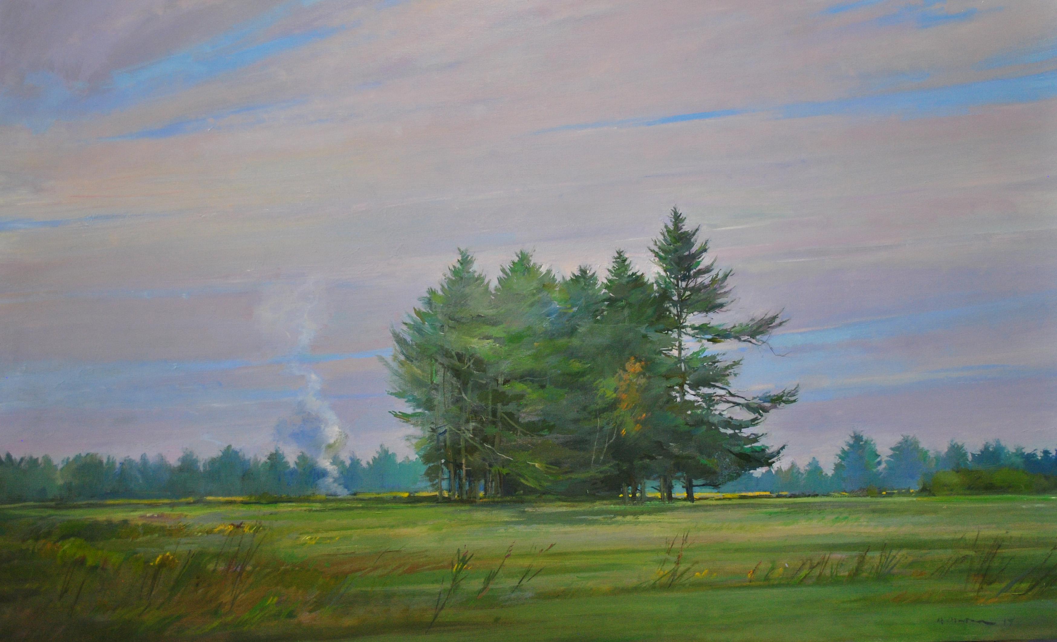 Pines in a Field